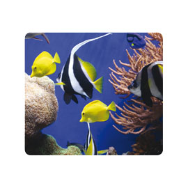 Mousepad sotto il mare ecologici earth series™ fellowes